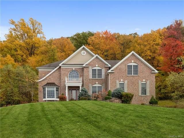 194 Devon Farms Road, Stormville, NY 12582 (MLS #H6083766) :: William Raveis Baer & McIntosh