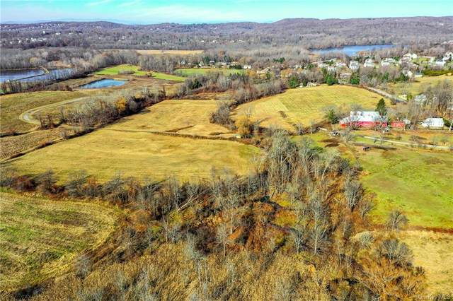 Greenhaven Road, Poughquag, NY 12570 (MLS #H6083798) :: McAteer & Will Estates   Keller Williams Real Estate