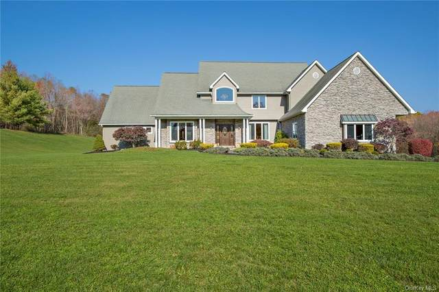 59 Pond Hills Court, Pleasant Valley, NY 12569 (MLS #H6084018) :: Nicole Burke, MBA | Charles Rutenberg Realty