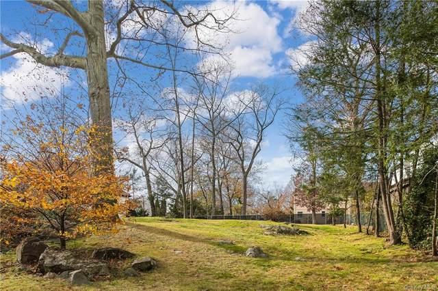 23 Ardell Road, Bronxville, NY 10708 (MLS #H6084025) :: Cronin & Company Real Estate