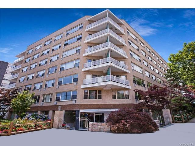 12 Old Mamaroneck Road 3H, White Plains, NY 10605 (MLS #H6084199) :: Signature Premier Properties