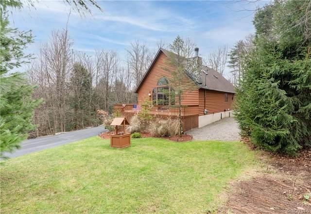 26 E Adirondack Trail, Bethel, NY 12720 (MLS #H6084246) :: Shalini Schetty Team