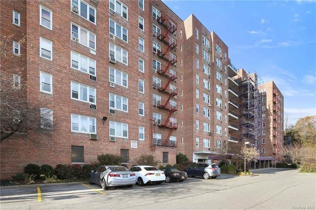 245 Rumsey Road 8K, Yonkers, NY 10701 (MLS #H6084250) :: RE/MAX RoNIN