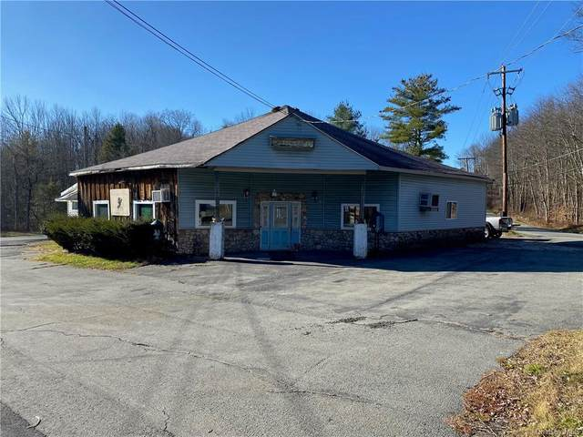 3659 State Route 42, Monticello, NY 12701 (MLS #H6084263) :: Cronin & Company Real Estate