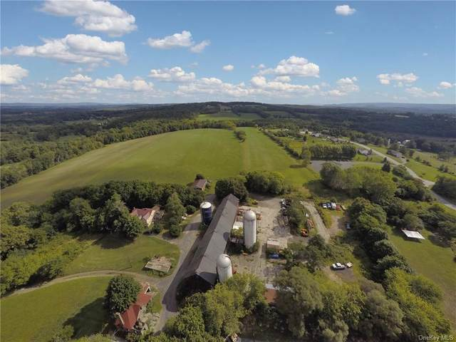 1728 Route 17M, Goshen, NY 10924 (MLS #H6084280) :: Cronin & Company Real Estate