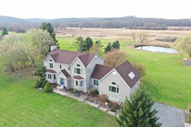 276 Black Meadow Road, Chester, NY 10918 (MLS #H6084388) :: Mark Seiden Real Estate Team