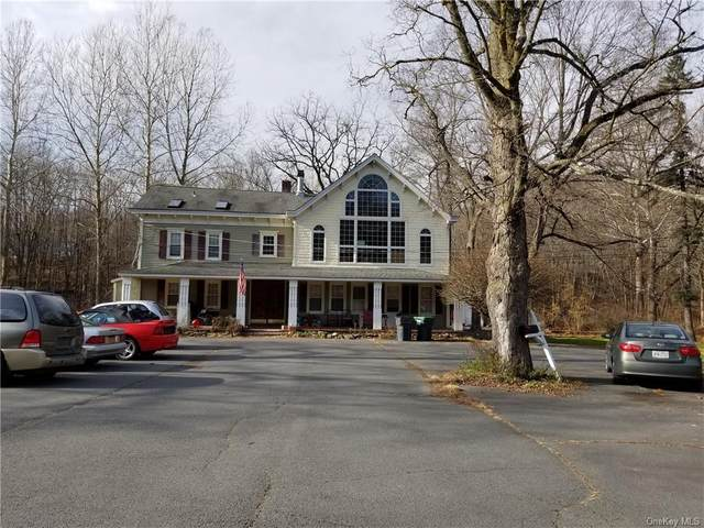 931 State Route 32, Highland Mills, NY 10930 (MLS #H6084389) :: Mark Seiden Real Estate Team