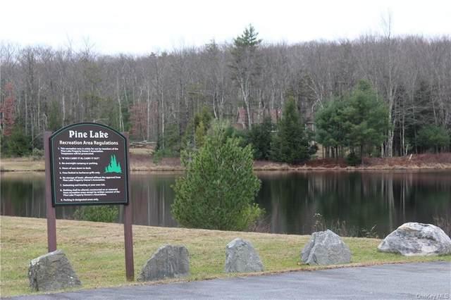 County Route 56 (Lot 23), Wurtsboro, NY 12790 (MLS #H6084413) :: Mark Seiden Real Estate Team