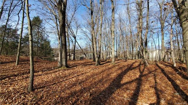 192 Alexander Road, Monroe, NY 10950 (MLS #H6084419) :: McAteer & Will Estates | Keller Williams Real Estate