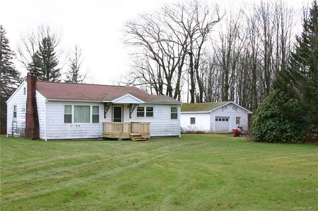 623 Harris Road, Ferndale, NY 12734 (MLS #H6084587) :: Marciano Team at Keller Williams NY Realty
