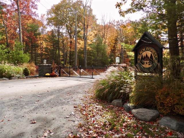 Black Forest Road Road, Glen Spey, NY 12737 (MLS #H6084810) :: Signature Premier Properties