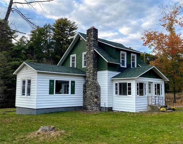 2335 State Route 42, Forestburgh, NY 12777 (MLS #H6084846) :: Kevin Kalyan Realty, Inc.