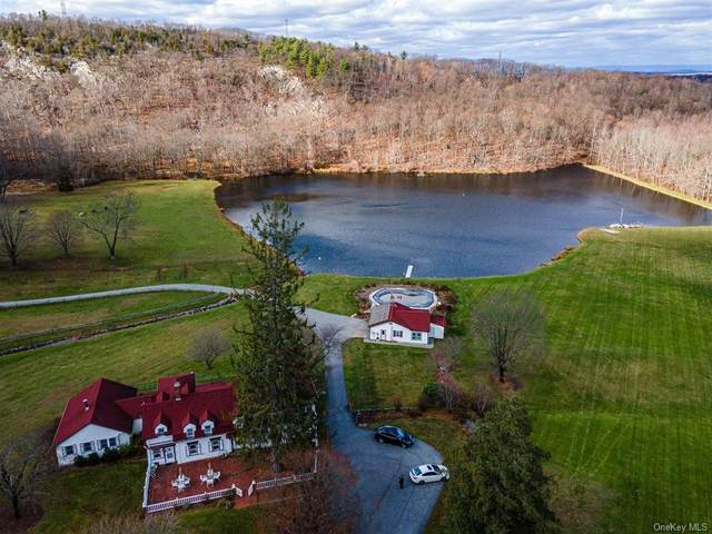 547 Bull Mill Road #557, Chester, NY 10918 (MLS #H6084866) :: William Raveis Baer & McIntosh