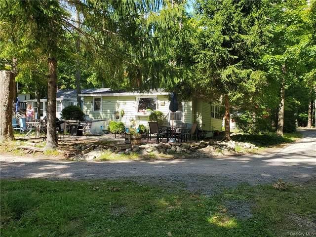 21 2nd Road, Rock Hill, NY 12775 (MLS #H6084877) :: Cronin & Company Real Estate