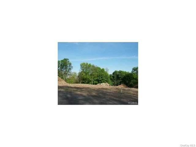Lot 8 Tomlins View, Stony Point, NY 10980 (MLS #H6084953) :: Nicole Burke, MBA | Charles Rutenberg Realty