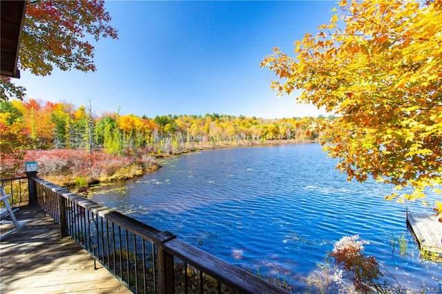 16 Wacher Dr Tr 5H, Bethel, NY 12720 (MLS #H6085032) :: Goldstar Premier Properties
