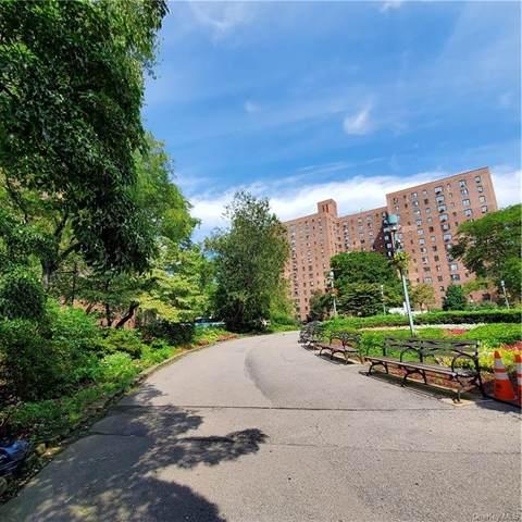 1565 Odell Street 6D, Bronx, NY 10462 (MLS #H6085115) :: Signature Premier Properties