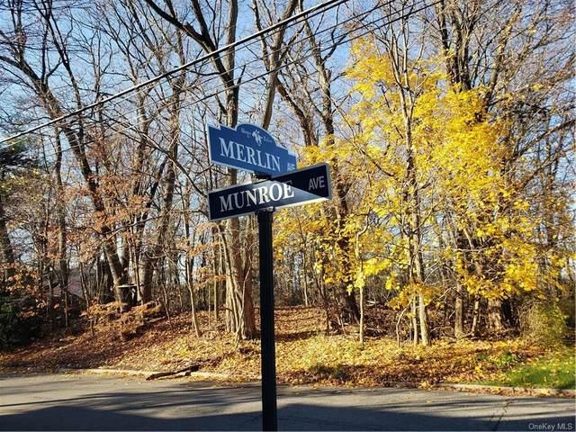 467 1/2 Munroe Avenue, Sleepy Hollow, NY 10591 (MLS #H6085166) :: Mark Seiden Real Estate Team