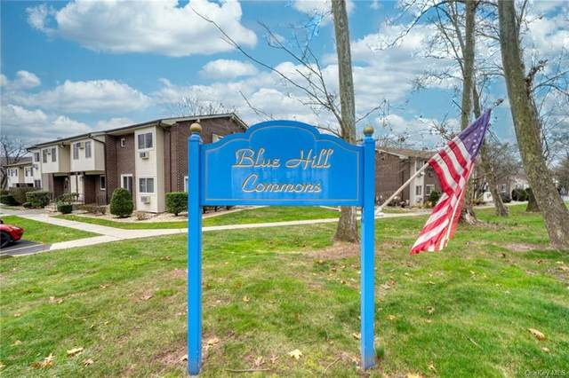 11 A Blue Hill Commons #11, Orangeburg, NY 10962 (MLS #H6085519) :: William Raveis Baer & McIntosh