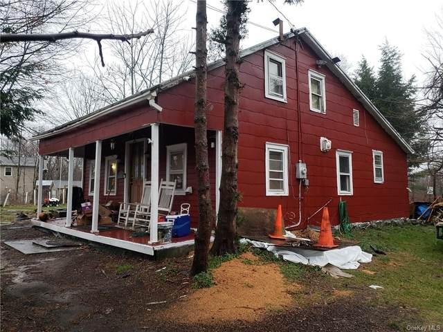 340 Clay Hill Road, Kerhonkson, NY 12446 (MLS #H6085596) :: Mark Seiden Real Estate Team