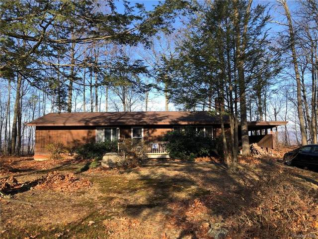37 Emperor Lane, Montgomery, NY 12549 (MLS #H6085652) :: The McGovern Caplicki Team