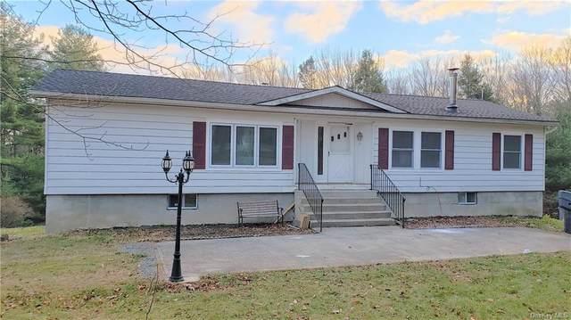 124 Low Road, Grahamsville, NY 12740 (MLS #H6086021) :: Mark Seiden Real Estate Team