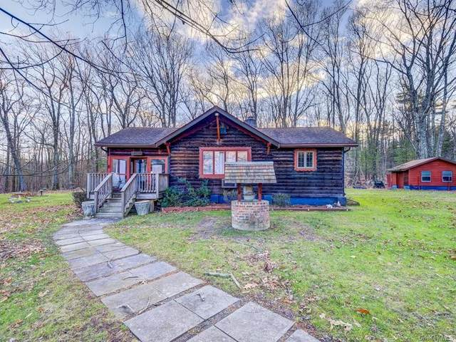 1 Prospect Road, Port Jervis, NY 12771 (MLS #H6086110) :: McAteer & Will Estates | Keller Williams Real Estate