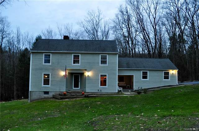249 Minisink Turnpike, Westtown, NY 10998 (MLS #H6086155) :: Kevin Kalyan Realty, Inc.