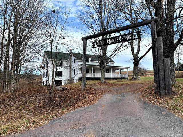 43 Kelly Road, Cochecton, NY 12726 (MLS #H6086245) :: William Raveis Baer & McIntosh