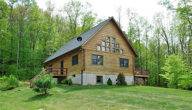 322 Bowers Road, Fremont Center, NY 12736 (MLS #H6086406) :: Kevin Kalyan Realty, Inc.