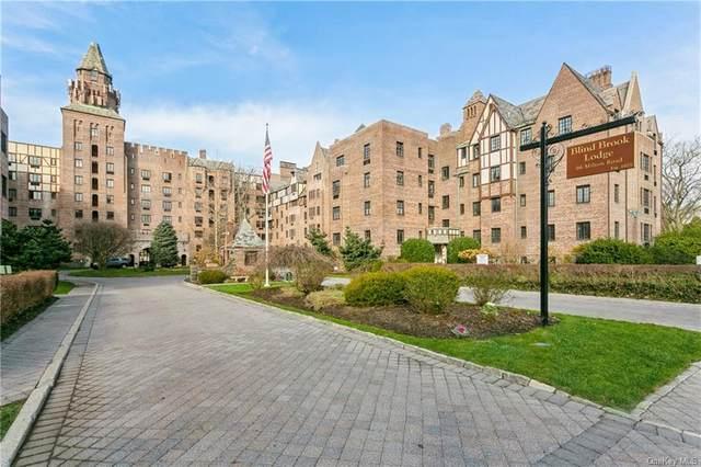 66 Milton Road G11, Rye, NY 10580 (MLS #H6086473) :: Carollo Real Estate