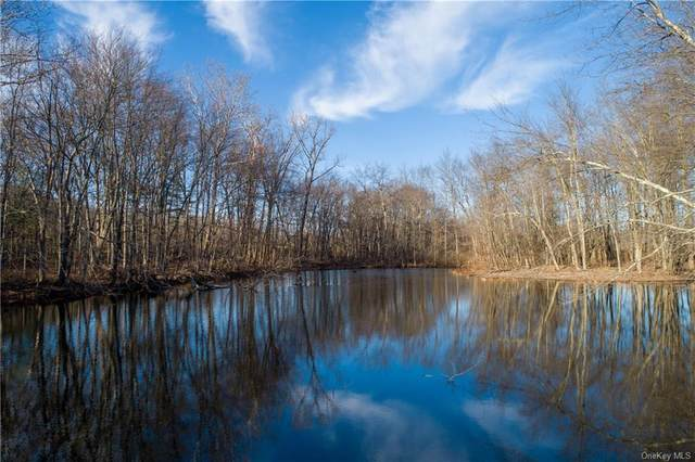 00 Traver Road, Pleasant Valley, NY 12569 (MLS #H6086521) :: McAteer & Will Estates | Keller Williams Real Estate