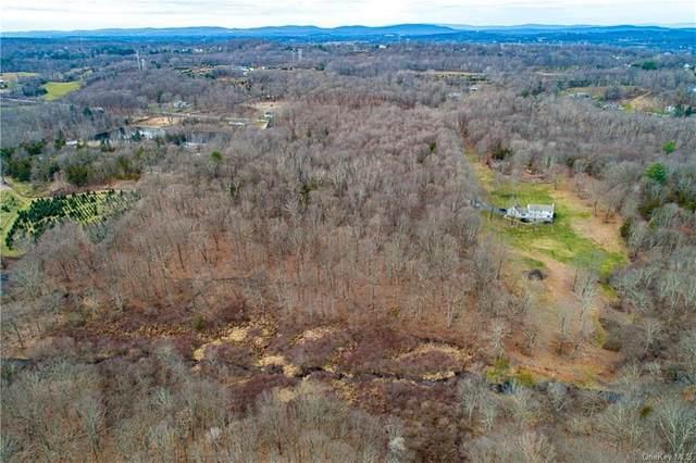 000 Traver Road, Pleasant Valley, NY 12569 (MLS #H6086692) :: McAteer & Will Estates | Keller Williams Real Estate