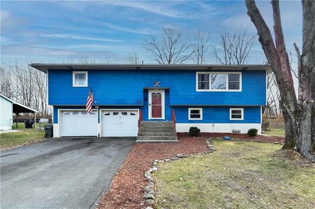 316 Lake Vue Drive, Montgomery, NY 12549 (MLS #H6086746) :: William Raveis Baer & McIntosh