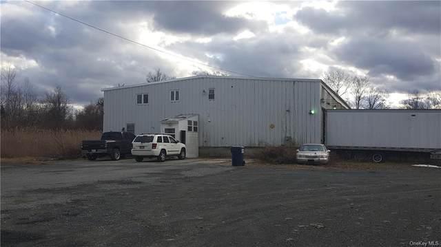 21 Boniface Drive, Pine Bush, NY 12566 (MLS #H6086759) :: Kevin Kalyan Realty, Inc.