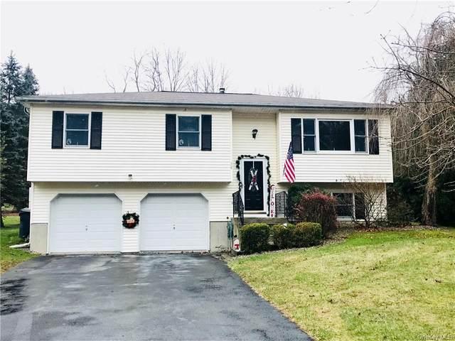 58 Washington Drive, Highland Mills, NY 10930 (MLS #H6086772) :: Mark Seiden Real Estate Team