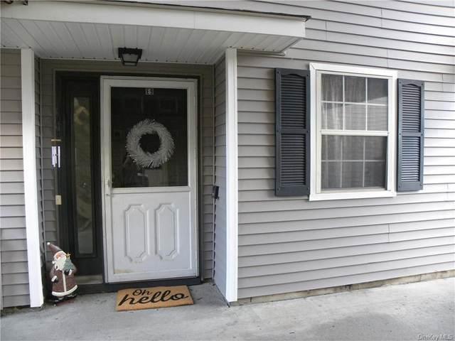 100 Hillside Drive E9, Middletown, NY 10941 (MLS #H6086778) :: Mark Boyland Real Estate Team