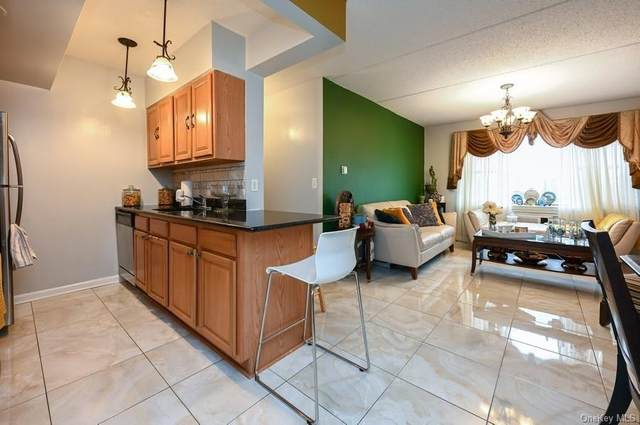1259 Grant Avenue 10C, Bronx, NY 10456 (MLS #H6086826) :: Carollo Real Estate