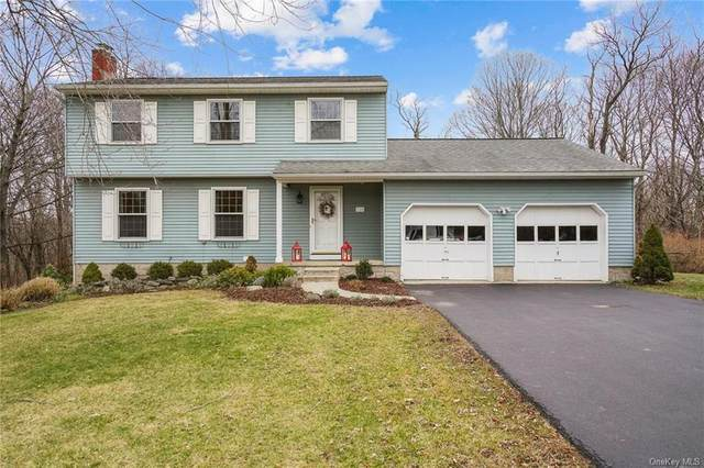 254 Forest Valley Road, Pleasant Valley, NY 12569 (MLS #H6086959) :: Kevin Kalyan Realty, Inc.