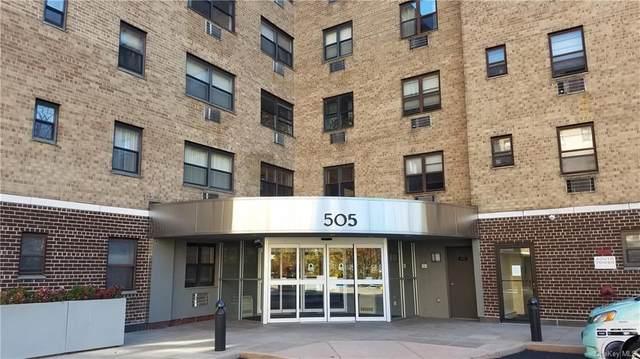 505 Central Park Avenue #418, White Plains, NY 10606 (MLS #H6087025) :: Shalini Schetty Team