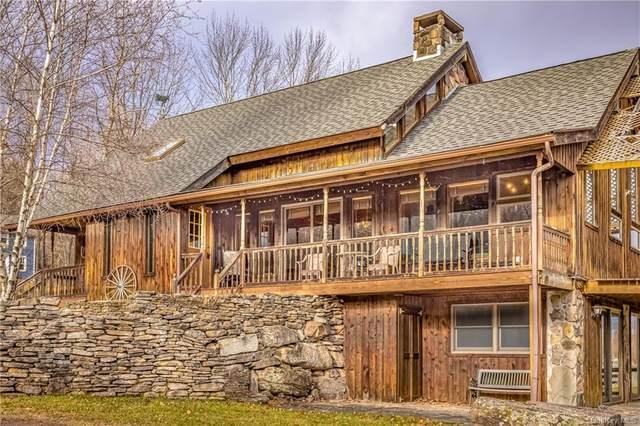 629 Big Hollow Road, Grahamsville, NY 12740 (MLS #H6087153) :: Mark Seiden Real Estate Team