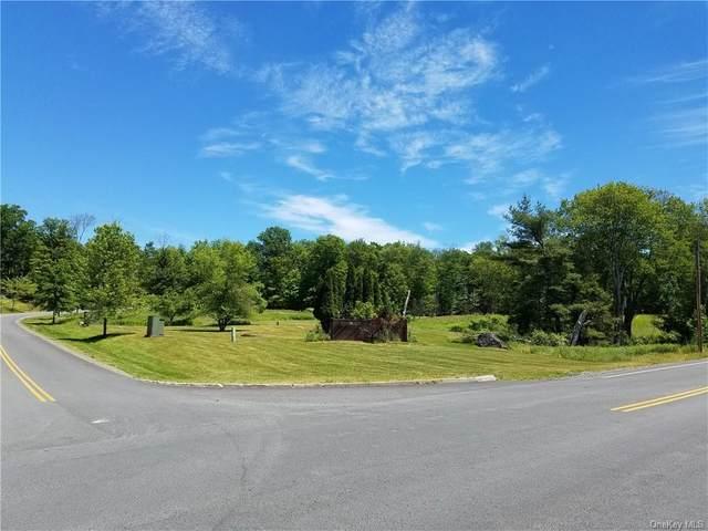 Rock Hill Drive, Rock Hill, NY 12775 (MLS #H6087170) :: Mark Boyland Real Estate Team