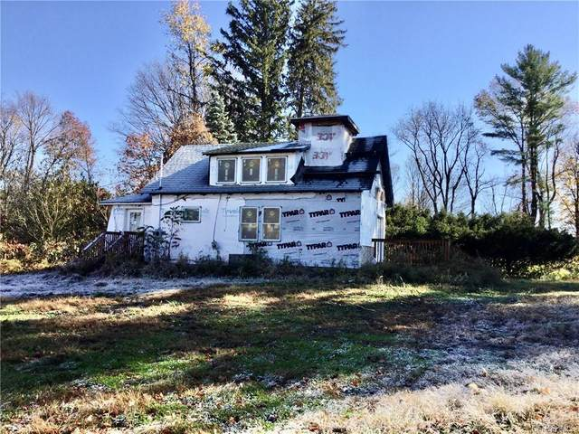 1513 State Route 52, Walden, NY 12586 (MLS #H6087194) :: Mark Seiden Real Estate Team