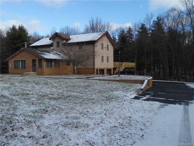 97 Hilltop Road, Monticello, NY 12701 (MLS #H6087253) :: Live Love LI