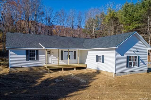 2 Spruce Hill, Amenia, NY 12501 (MLS #H6087550) :: Mark Seiden Real Estate Team