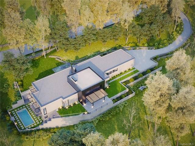 41 Mead Road, Armonk, NY 10504 (MLS #H6087553) :: Mark Seiden Real Estate Team