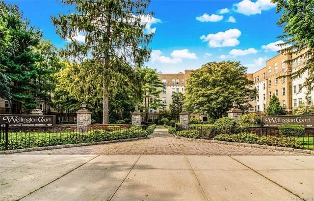 472 Gramatan Avenue 5T, Mount Vernon, NY 10552 (MLS #H6087554) :: McAteer & Will Estates | Keller Williams Real Estate