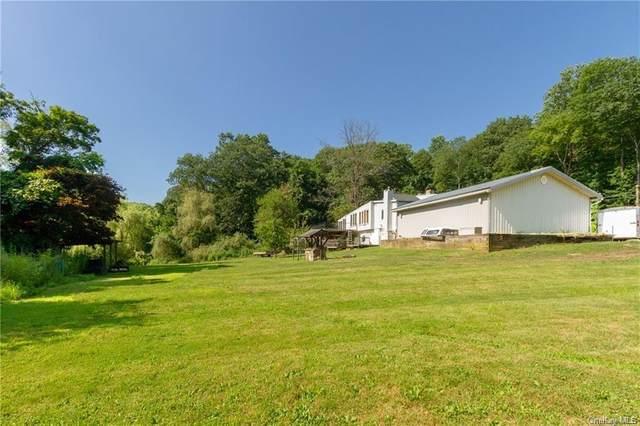 178 Seminary Hill Road, Carmel, NY 10512 (MLS #H6087560) :: Mark Seiden Real Estate Team