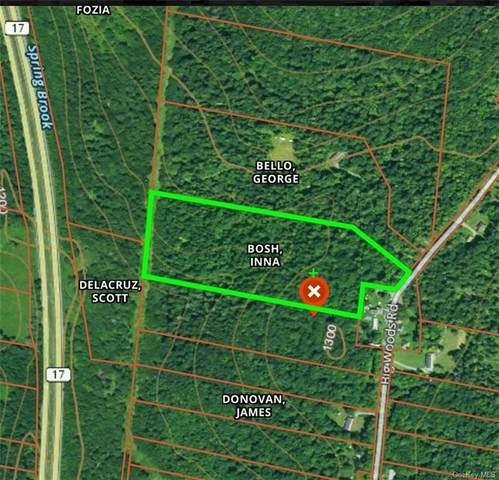 Big Woods Road, Harris, NY 12742 (MLS #H6087576) :: The Home Team