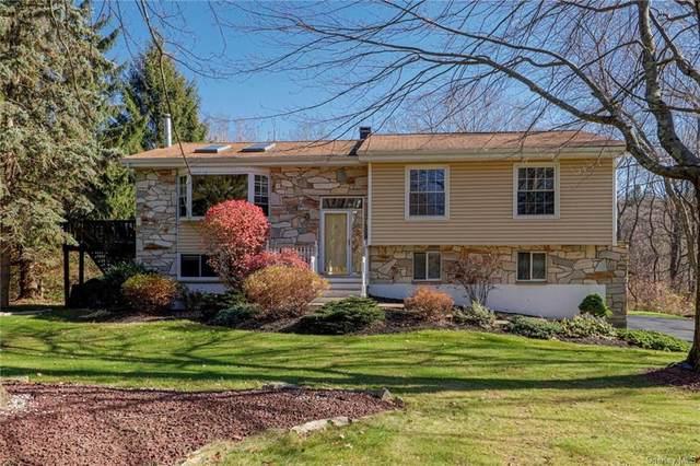 159 Overhill Road, Stormville, NY 12582 (MLS #H6087605) :: Nicole Burke, MBA | Charles Rutenberg Realty